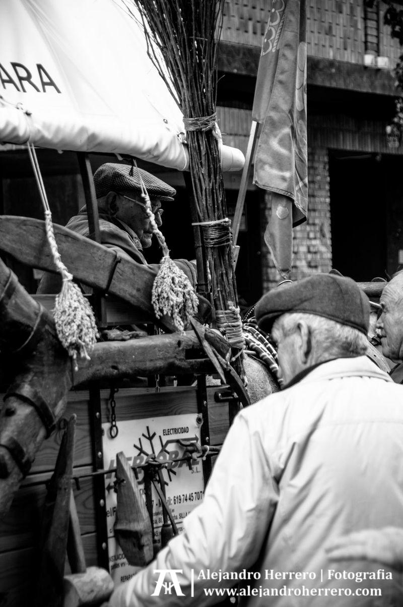 2013-01-17-San-Antonio-Patron-de-los-animales-Valencia-039-BW3